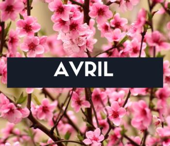 Fruits, légumes et recette du mois d'avril