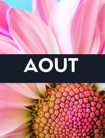 Fruits, légumes et recette du mois d'aout