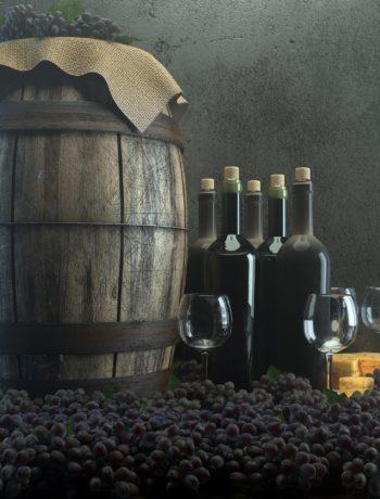 5 bonnes raisons de consommer du vin bio