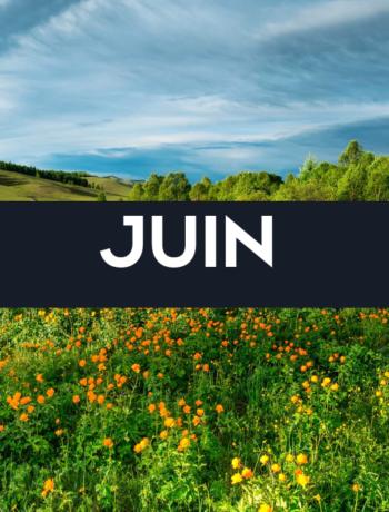 Fruits, légumes et recette du mois de Juin